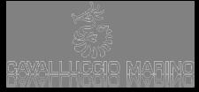 Logo Cavalluccio Marino Torre Pedrera